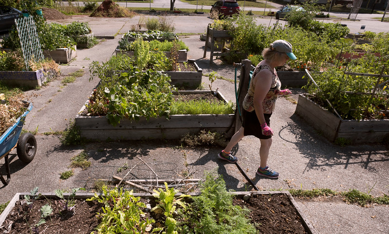 veggietheft 4.jpg