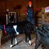 FarmingForWholesale120716 003.JPG