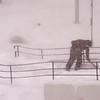blizzard 021317 1.jpg