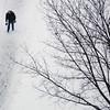 SnowFeature020917 001.JPG