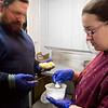 buttermaking010117 009.JPG
