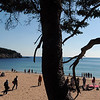 summer1010.jpg
