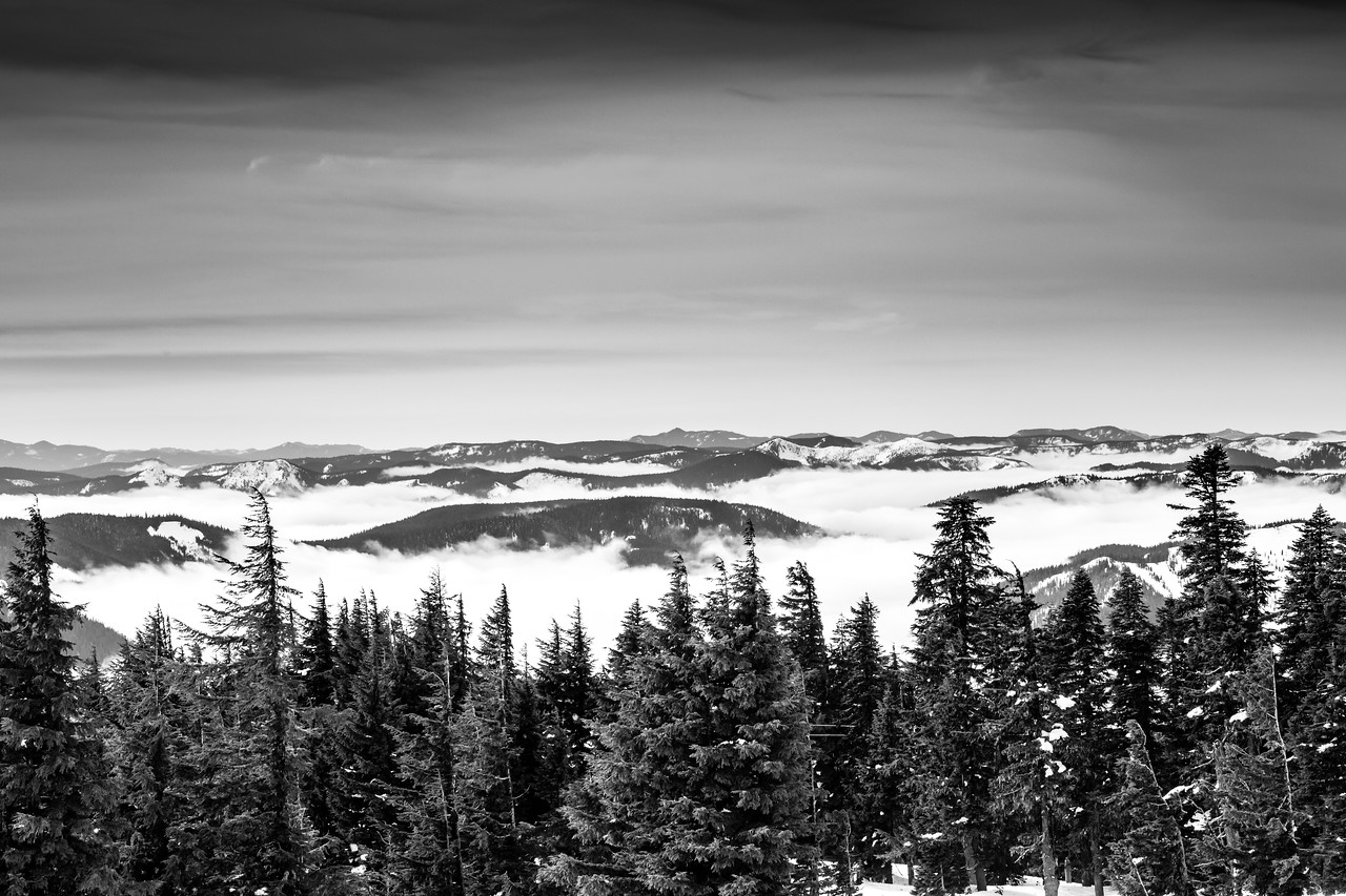 thousands down week 6: up to Timberline