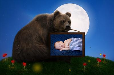 Enzo Bear