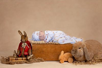 Enzo Bunny-