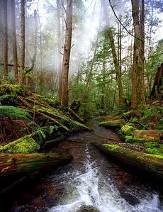 Mixal Creek