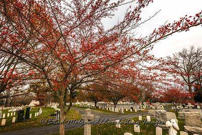 Military Cemetery-West Point, NY