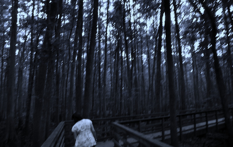 Dark and spooky version of the Wolf River swamp, Rossville, TN