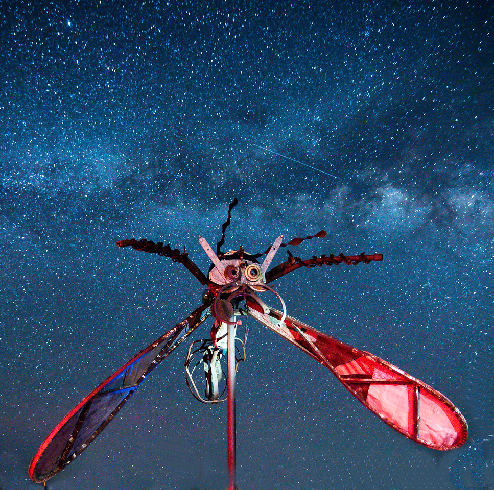 The Terlingua Mosquito Sculpture