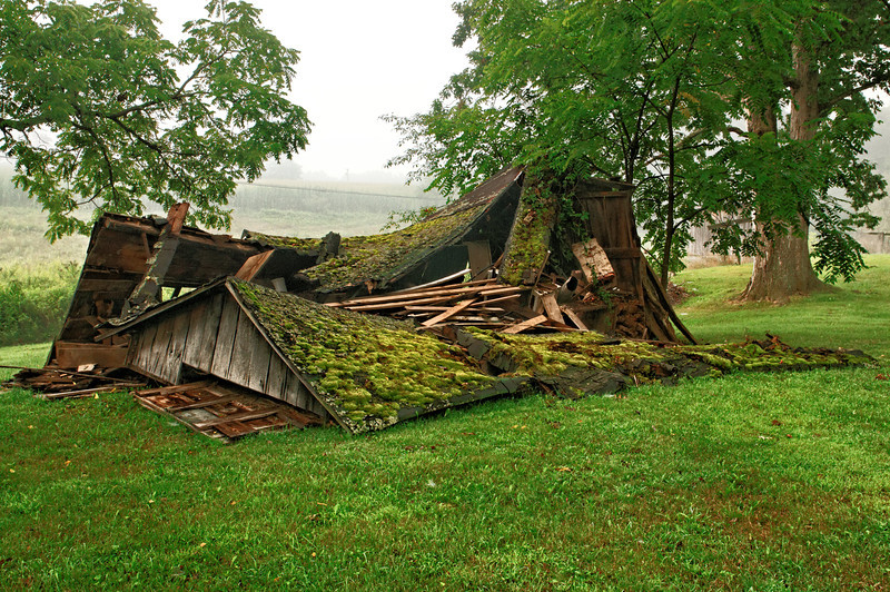 Lowdermilk Mollasses Barn - Collapsed in a storm the week before I took this picture