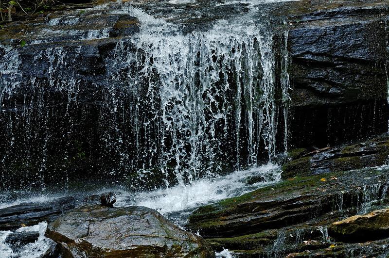 Pearson Falls II