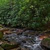 Colt Creek