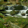 Pearson Falls Creek