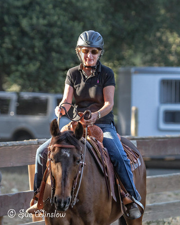 Western Riding Clinic 2014