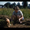 Mom with dog, back yard of the Gault Park house, 1954.