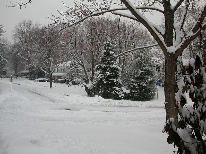More snow!  More inches!  We have lost count!