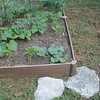 I'm going to put rock around the raised bed because there is not grass left in the yard, it is all weeds.