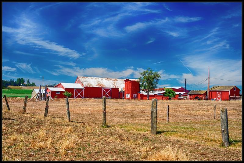 Sherman Farms, near Coupeville.