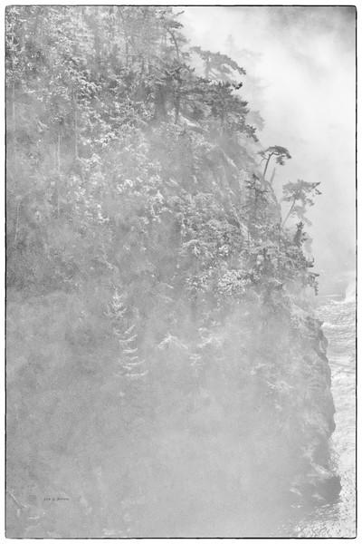 Foggy Hillside - Deception Pass