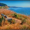 Bench with a view - Ebey's Landing