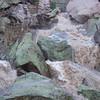 Along Whitewater Creek, Jan. 28, 2008
