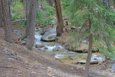 8/18/11 Lone Pine Creek, Whitney Portal National Recreation Trail. Eastern Sierras, Inyo National Forest, Inyo County, CA