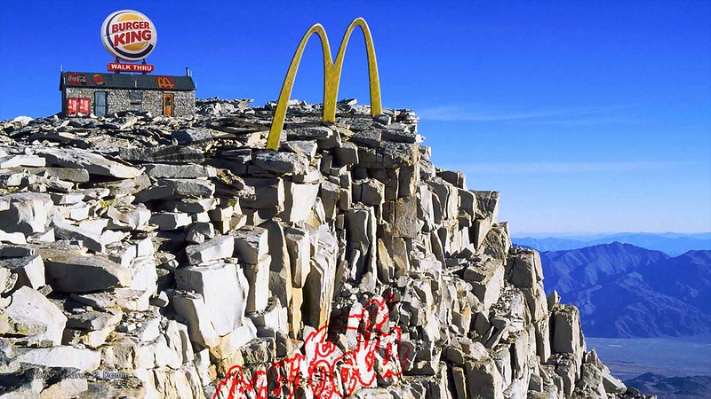 Whitney McDonald's Burger King