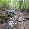 The creek we hunt near in Redlands (Oconee Nat'l Forest)