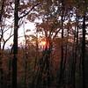 10/24/11 Sunrise on the way to hunt bear in Chattahoochee Wilderness