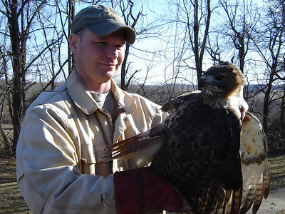 It was not injured, but Brian kept the bird for a few hours before allowing it to fly off.