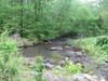 Spring2011 026