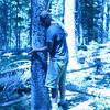 Wildlife Watchers volunteer places trailcam on tree