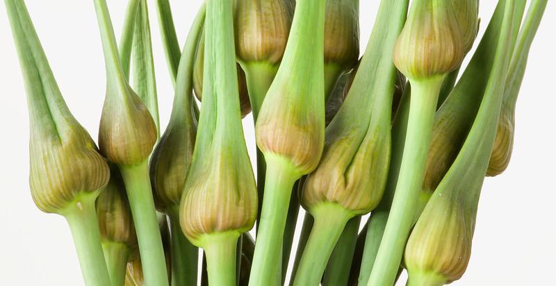 _FD35409a<br /> <br /> Garlic spears