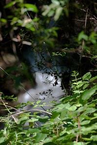 Wildwood Park May 2010 (31 of 34)