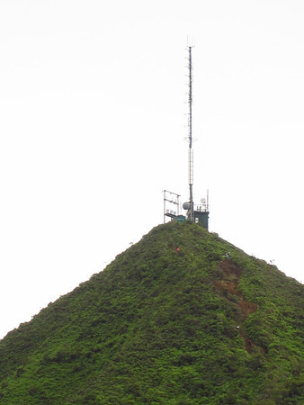 Wiliwili Nui 2012