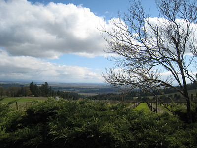 Willamette Valley April 2011