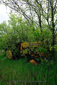 Yellow tractor-Williamson County, Texas