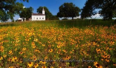 """Gold Covering in Wesley"" - Wesley Brethren Church-Brenham, Texas"