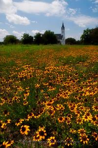 """""""Gilded Way"""" - St. John the Baptist-Ammannsville, Texas"""