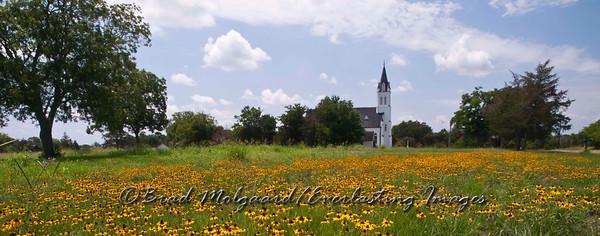 """""""Black-eyed-Susan Array"""" (panorama) - St. John the Baptist-Ammannsville, Texas"""