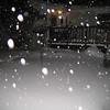 Winter_2008 018