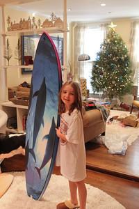 Marin's dolphin board