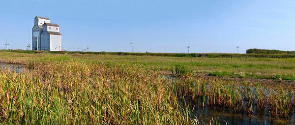 Grain Elevator and Swamp