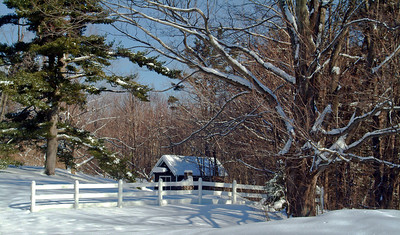 Shed and Fence In Snow
