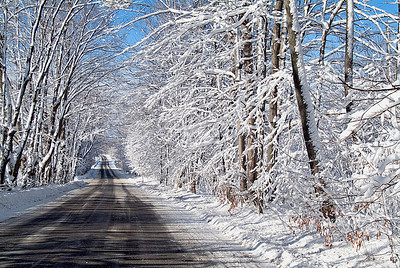 Country Road In Winter 2