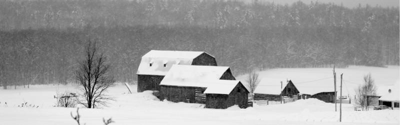 Snowy Days On The Farm