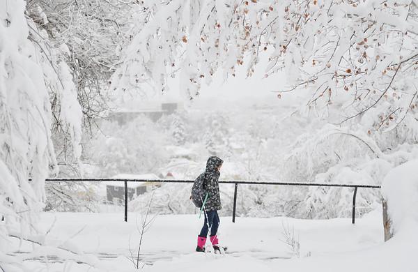 Winter Storm Dumps Foot of Snow on Sheridan