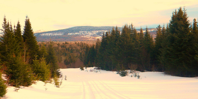Big Brook Road, Pittsburg, NH. Great place to snowshoe and x-country ski.