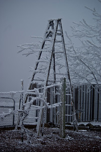 Winter ladder
