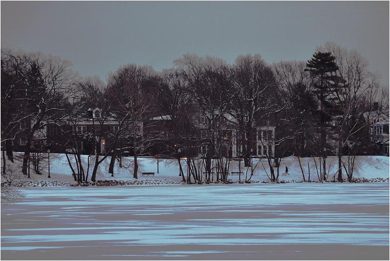 Jamaica Pond, Jamaica Plain. February, 2014.